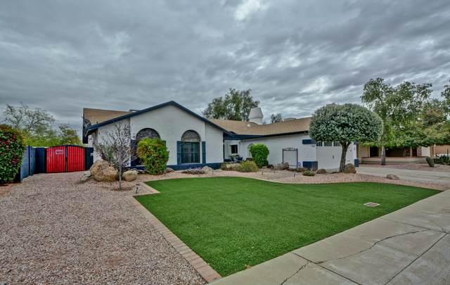 16239 N 60TH Avenue, Glendale, AZ 85306 (MLS #6049809) :: Brett Tanner Home Selling Team