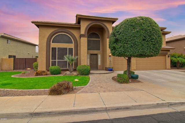 4329 N 129TH Drive, Litchfield Park, AZ 85340 (MLS #6049815) :: Brett Tanner Home Selling Team