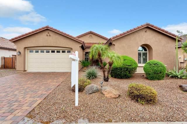 670 W Grand Canyon Drive, Chandler, AZ 85248 (MLS #6049909) :: The Daniel Montez Real Estate Group