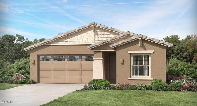 44908 W Rhea Road, Maricopa, AZ 85139 (MLS #6049941) :: Revelation Real Estate
