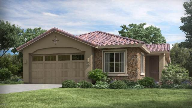44866 W Rhea Road, Maricopa, AZ 85139 (MLS #6049946) :: Revelation Real Estate