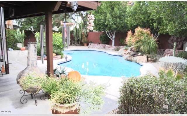 3544 W Paradise Lane, Phoenix, AZ 85053 (MLS #6049969) :: Brett Tanner Home Selling Team