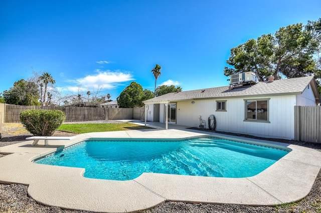 3850 E Emile Zola Avenue, Phoenix, AZ 85032 (MLS #6050021) :: Brett Tanner Home Selling Team