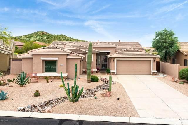 4177 S Lysiloma Lane, Gold Canyon, AZ 85118 (MLS #6050061) :: Brett Tanner Home Selling Team