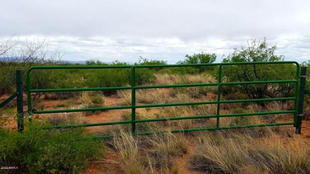 Lot 57 N Last Trail, Elfrida, AZ 85610 (MLS #6050161) :: neXGen Real Estate