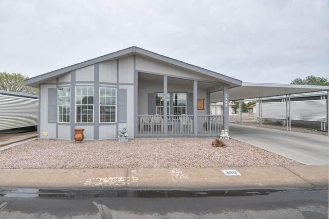 2100 N Trekell Road #360, Casa Grande, AZ 85122 (MLS #6050205) :: Brett Tanner Home Selling Team