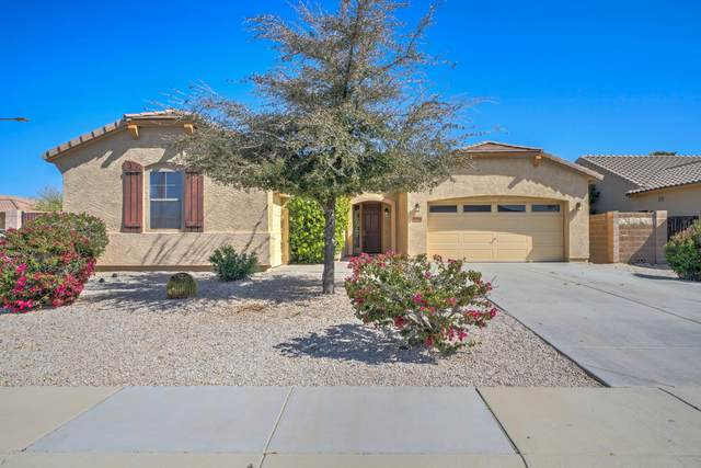 30402 W Whitton Avenue, Buckeye, AZ 85396 (MLS #6050252) :: Lux Home Group at  Keller Williams Realty Phoenix
