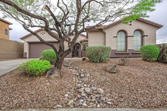 42507 N Parker Lane, Anthem, AZ 85086 (MLS #6050255) :: Conway Real Estate