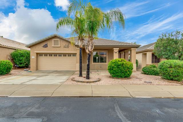 17547 N Thornberry Drive, Surprise, AZ 85374 (MLS #6050331) :: Long Realty West Valley