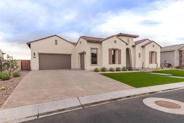 7126 S Portland Avenue, Gilbert, AZ 85298 (MLS #6050337) :: Revelation Real Estate