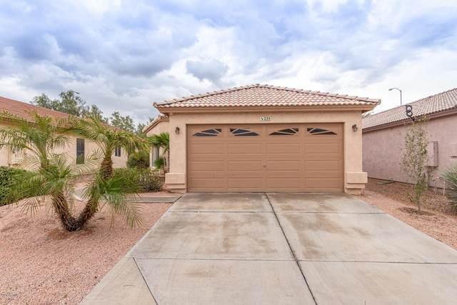 225 N Saffron Circle, Mesa, AZ 85205 (MLS #6050461) :: Brett Tanner Home Selling Team