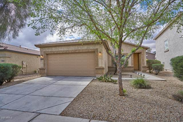 1165 E Blackfoot Daisy Drive, San Tan Valley, AZ 85143 (MLS #6050584) :: Russ Lyon Sotheby's International Realty