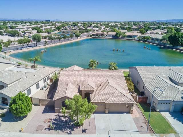 2051 N 110TH Avenue, Avondale, AZ 85392 (MLS #6050592) :: The Laughton Team