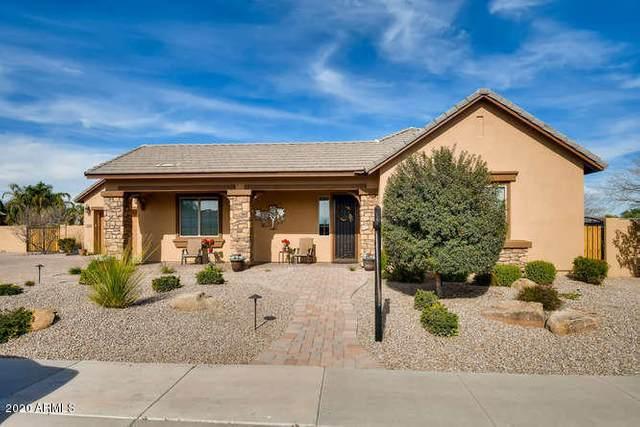 2970 E Kingbird Drive, Gilbert, AZ 85297 (MLS #6050608) :: Revelation Real Estate