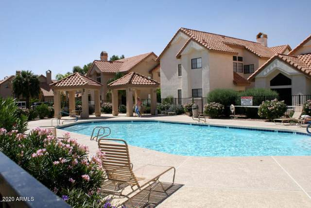 1001 N Pasadena Drive #97, Mesa, AZ 85201 (#6050723) :: The Josh Berkley Team
