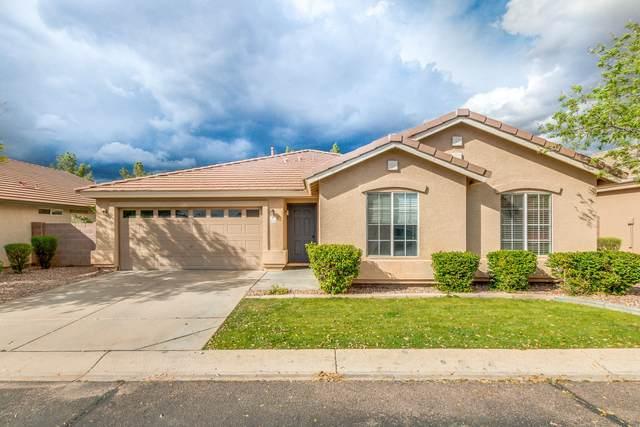 5240 E Ingram Street, Mesa, AZ 85205 (MLS #6050813) :: Conway Real Estate