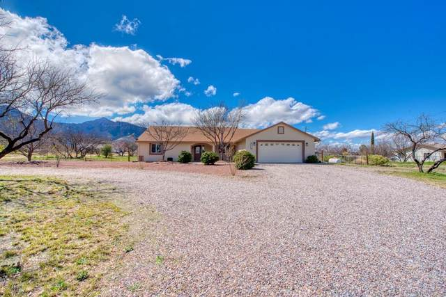 6970 S Jaxel Road, Hereford, AZ 85615 (MLS #6050853) :: Howe Realty