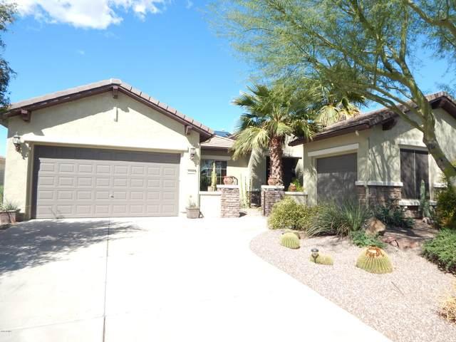 6260 W Saratoga Way, Florence, AZ 85132 (MLS #6050914) :: Klaus Team Real Estate Solutions
