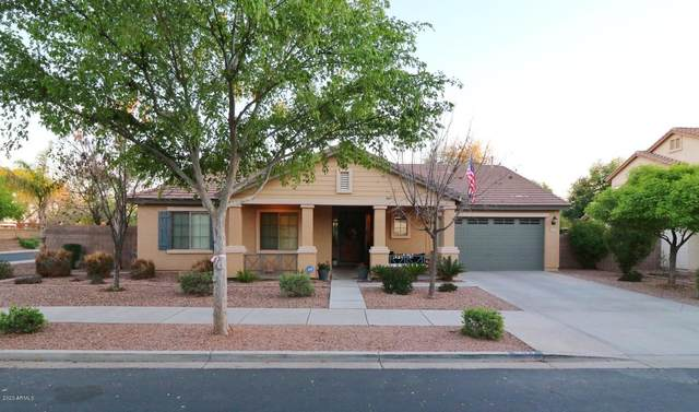 19177 E Macaw Drive, Queen Creek, AZ 85142 (MLS #6050982) :: Riddle Realty Group - Keller Williams Arizona Realty