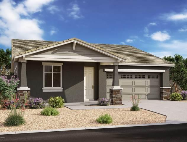13235 W Dale Lane, Peoria, AZ 85383 (MLS #6051154) :: Riddle Realty Group - Keller Williams Arizona Realty