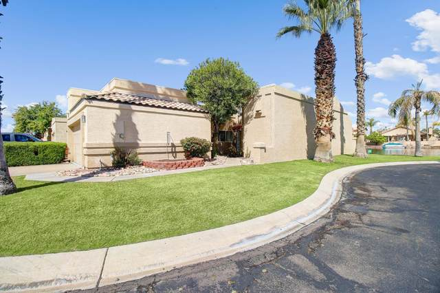9010 W Port Royale Lane, Peoria, AZ 85381 (MLS #6051495) :: Nate Martinez Team