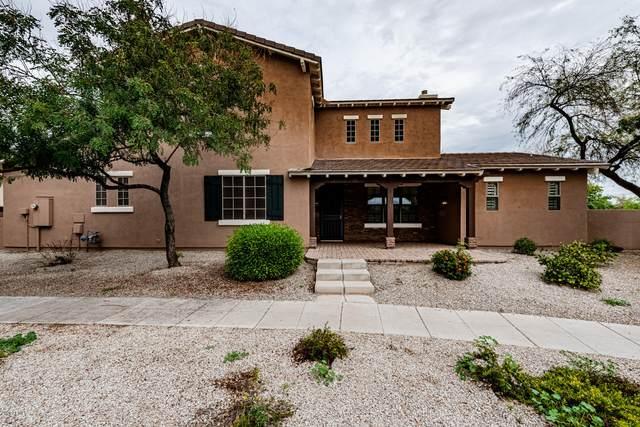 13323 N 151ST Drive, Surprise, AZ 85379 (MLS #6051498) :: Nate Martinez Team