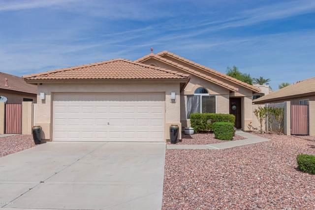 8138 W Marco Polo Road, Peoria, AZ 85382 (MLS #6051643) :: Howe Realty