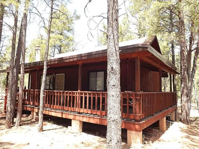 2831 Cattle Trail Road, Overgaard, AZ 85933 (MLS #6051661) :: Long Realty West Valley