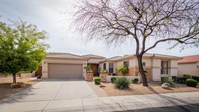 6119 W Hedgehog Place, Phoenix, AZ 85083 (MLS #6051695) :: Brett Tanner Home Selling Team