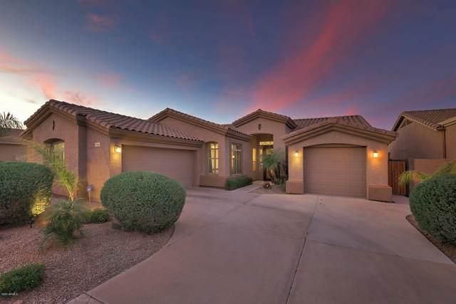 740 W Aloe Place, Chandler, AZ 85248 (MLS #6051721) :: Dave Fernandez Team | HomeSmart