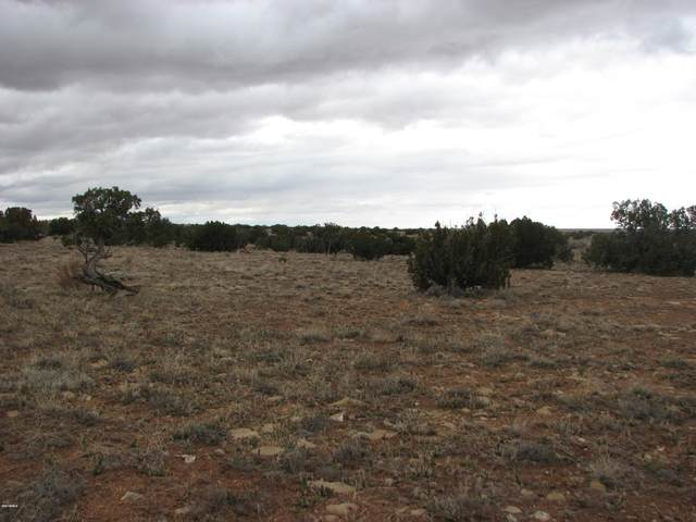 Lot 520 Chevelon Canyon Ranch, Overgaard, AZ 85933 (MLS #6051735) :: The Ellens Team