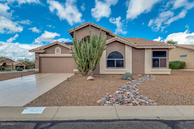 6258 S Palo Blanco Drive, Gold Canyon, AZ 85118 (MLS #6051738) :: The Everest Team at eXp Realty