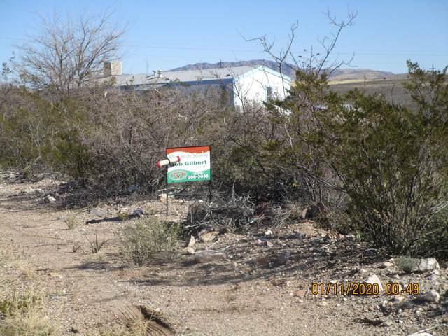 TBD N Camino San Rafael Road, Tombstone, AZ 85638 (MLS #6051743) :: Brett Tanner Home Selling Team