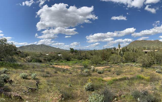 43417 N 3RD Street, New River, AZ 85087 (MLS #6051762) :: The Daniel Montez Real Estate Group