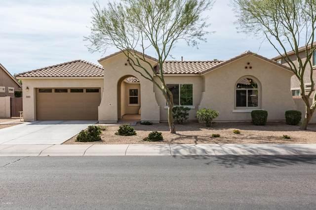 3149 E Oriole Drive, Gilbert, AZ 85297 (MLS #6051773) :: Revelation Real Estate
