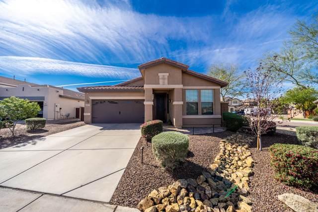 10377 W Los Gatos Drive, Peoria, AZ 85383 (MLS #6051776) :: Brett Tanner Home Selling Team