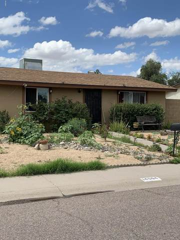 14604 N 52ND Avenue, Glendale, AZ 85306 (MLS #6051781) :: Keller Williams Realty Phoenix