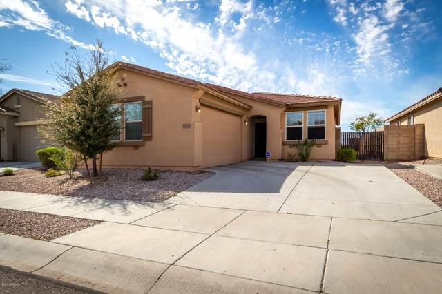 17753 W Tonto Street, Goodyear, AZ 85338 (MLS #6051932) :: Nate Martinez Team