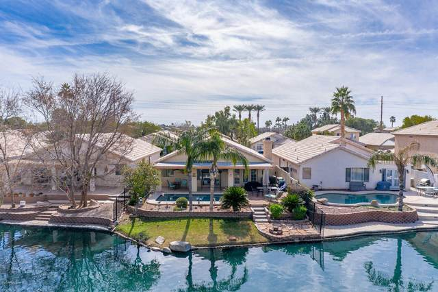 1410 E Cindy Street, Chandler, AZ 85225 (MLS #6051952) :: Relevate   Phoenix