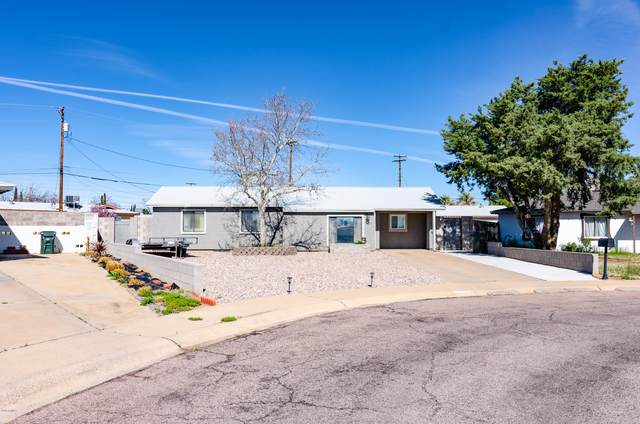632 Calle Del Sud, Sierra Vista, AZ 85635 (MLS #6051968) :: The Property Partners at eXp Realty