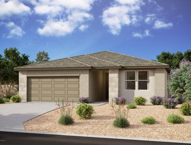 10031 E Rubidium Avenue, Mesa, AZ 85212 (MLS #6051987) :: Brett Tanner Home Selling Team