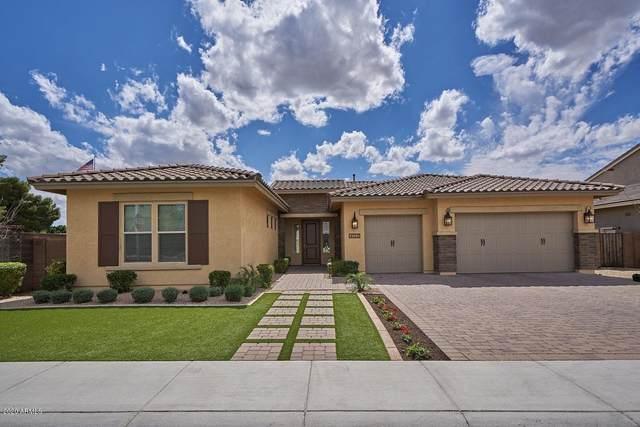 4133 E Gable Avenue, Mesa, AZ 85206 (MLS #6052068) :: Klaus Team Real Estate Solutions
