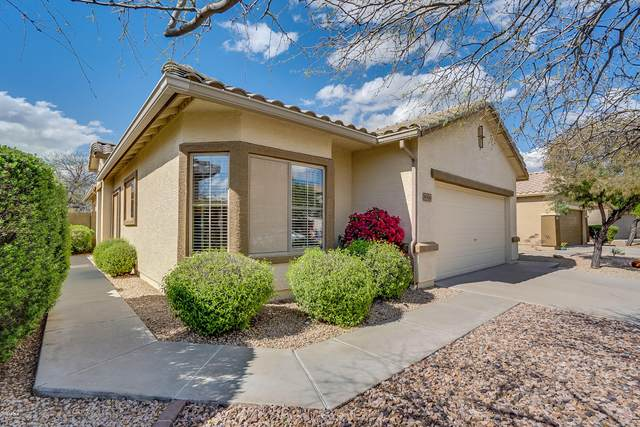 40616 N Territory Trail, Anthem, AZ 85086 (MLS #6052117) :: The Bill and Cindy Flowers Team