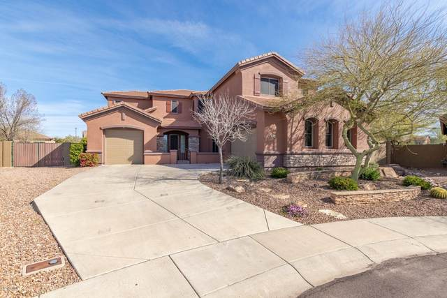 2403 W Kit Carson Court, Phoenix, AZ 85086 (MLS #6052122) :: Lucido Agency