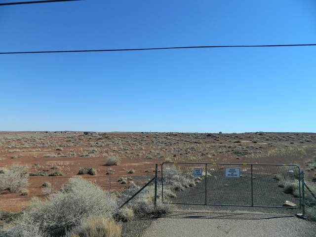 8729 S Highway 87, Winslow, AZ 86047 (MLS #6052141) :: Kepple Real Estate Group