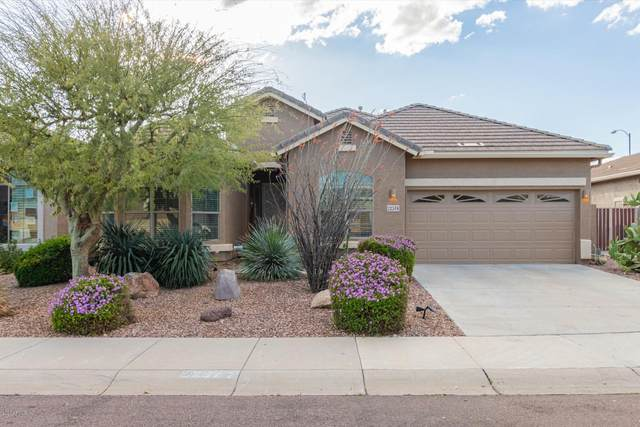 22374 N 104TH Lane, Peoria, AZ 85383 (MLS #6052162) :: Conway Real Estate