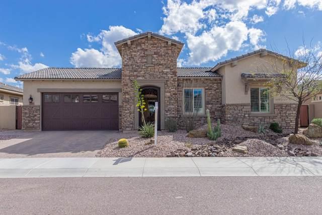 10087 W Spur Drive, Peoria, AZ 85383 (MLS #6052204) :: Howe Realty