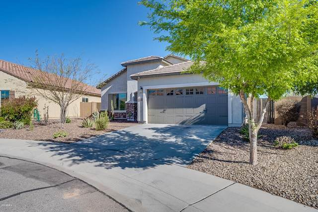 6470 W Desert Blossom Way, Florence, AZ 85132 (MLS #6052371) :: Conway Real Estate