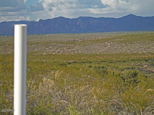 TBD E Cactus Circle, Tombstone, AZ 85638 (MLS #6052415) :: Long Realty West Valley