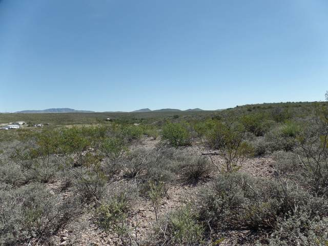 Lot 40 N Papago Place, Tombstone, AZ 85638 (MLS #6052450) :: Brett Tanner Home Selling Team